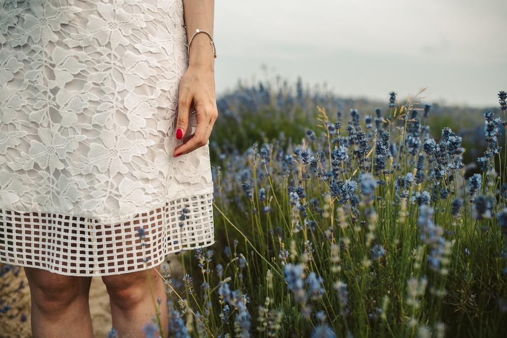 lavender field elopment italy